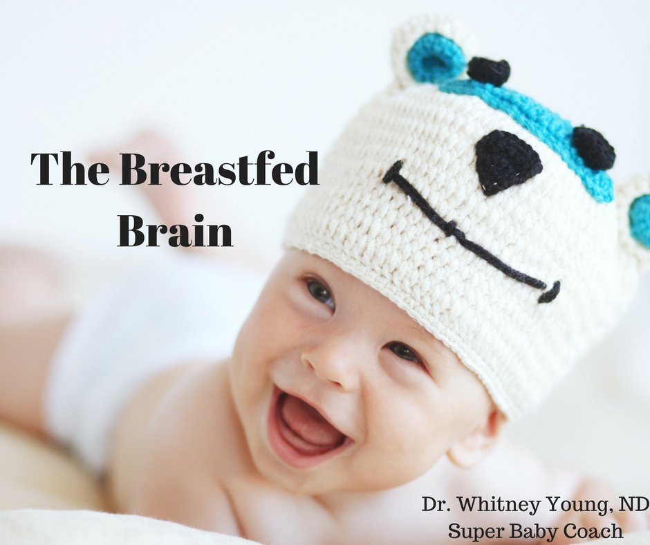 the-breastfed-brain-2